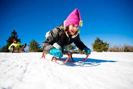 Zimski športni dan – 1.VIO